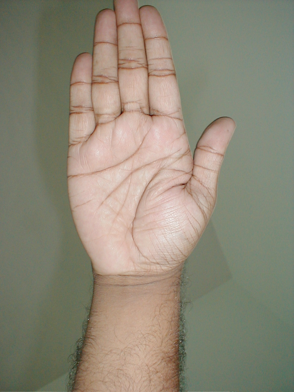 Palm Reading Blog | This palm reading blog is all about reading